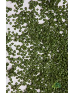 Løv og matter for trær, mbr-model-50-6001-birch-leaves-dark-green, MBR50-6001
